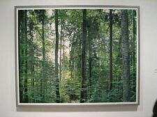 Paradise 19 (Bavarian Forest new Zweisel, 1999)